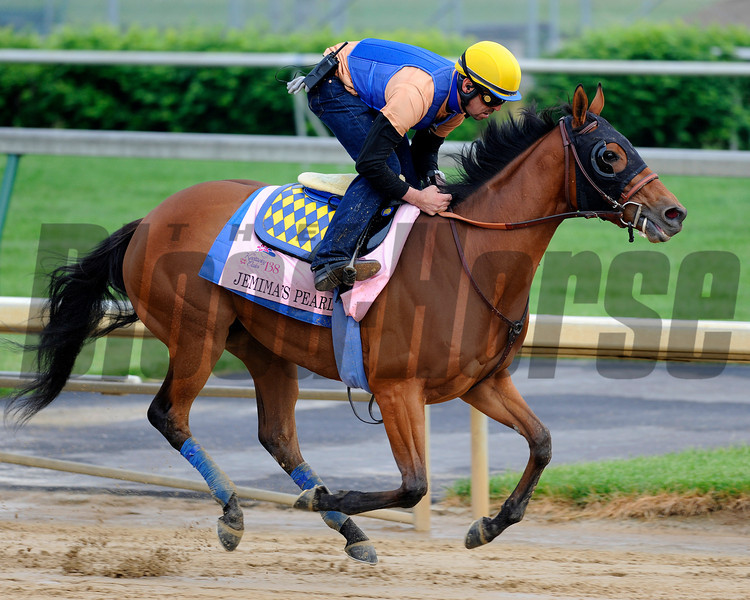 Caption:  Jemina's Pearl trained by Bob Baffert<br /> Kentucky Derby and Kentucky Oaks contenders on the track at Churchill Downs near Louisville, Ky. on April 29, 2012.<br /> AM2Works4_29_12 image192<br /> PHoto by Anne M. Eberhardt