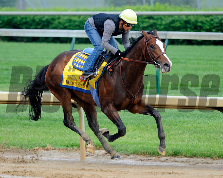 Bodemeister works at Churchill Downs April 29, 2012.<br /> Photo by Anne M. Eberhardt