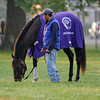 Sabercat<br /> Churchill Downs, Louisville, KY , Kentucky Derby 2012 4/30/12<br /> Photo by Mathea Kelley