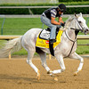 Hansen at Churchill Downs.<br /> Photo by Mallory Haigh