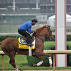 Dullahan gallops strongly at Churchill Downs. 5/1/2012<br /> Photo by Mallory Haigh