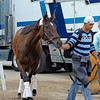 Caption:  Grace Hall arriving.<br /> Kentucky Derby and Kentucky Oaks contenders on the track at Churchill Downs near Louisville, Ky. on May 1, 2012.<br /> AMWorksArrivals5_1_12 image060<br /> PHoto by Anne M. Eberhardt