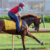 Churchill Downs, Louisville, KY photo by Mathea Kelley, Kentucky Derby 2012 5/14/2 Daddy Long Legs