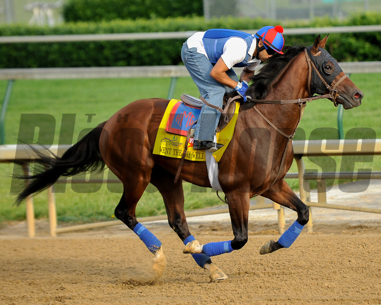 Went the Day Well at Churchill Downs.<br /> Photo by Mallory Haigh