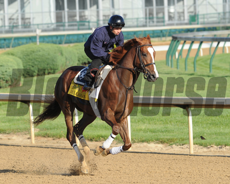 Churchill Downs, Louisville, KY, <br /> Morning work outs 4/27/12 Dullahan<br /> Photo by Mathea Kelley.