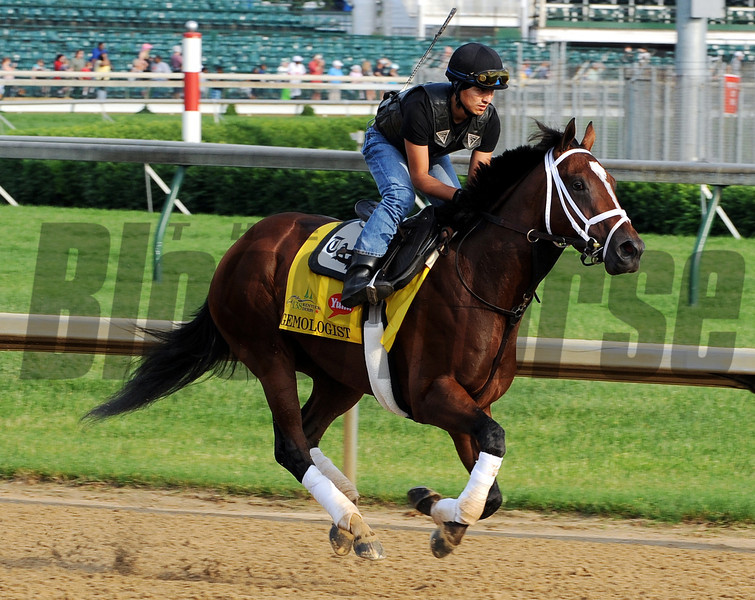 Gemologist - Churchill Downs May 3, 2012.<br /> Photo by Dave Harmon