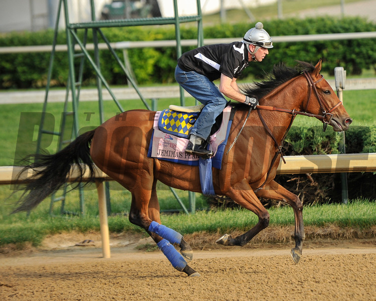 Jemima's Pearl at Churchill Downs.<br /> Photo by Mallory Haigh