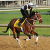 Done Talking<br /> © 2012 Rick Samuels/The Blood-Horse