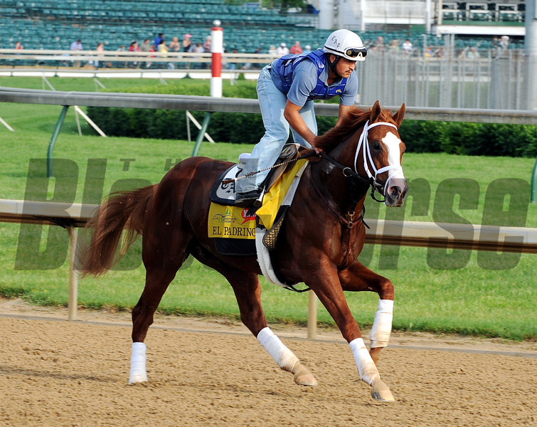 El Padrino - Churchill Downs, May 3, 2012.<br /> Photo by Dave Harmon