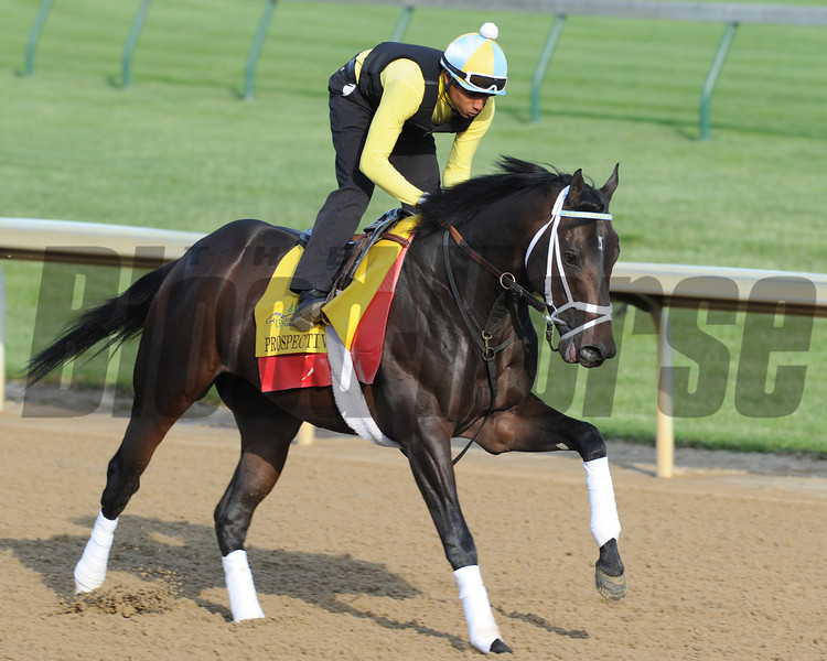Prospective, works at Churchill Downs Louisville; KY 4/24/12. <br /> Photo by Mathea Kelley.