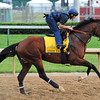 Union Rags<br /> © 2012 Rick Samuels/The Blood-Horse