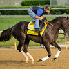 Take Charge Indy, Calvin Borel up, at Churchill Downs.<br /> Photo by Mallory Haigh