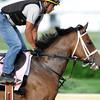 Sacristy<br /> Churchill Downs; Louisville; KY; Kentucky Derby 2012 4/30/11, , OAKS<br /> Photo by Mathea Kelley