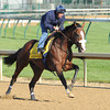 Churchill Downs, Louisville, KY, <br /> Morning work outs 4/27/12 - Union Rags<br /> Photo by Mathea Kelley.