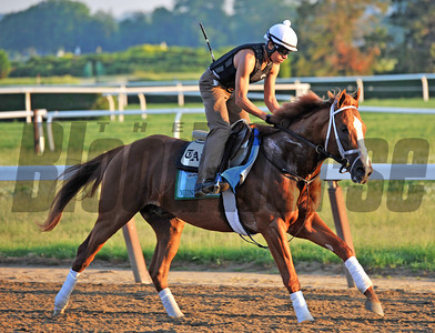 Belmont Stakes 145