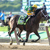 Palace Malice wins the 2013 Belmont Stakes.<br /> Coglianese Photos/David Alcosser