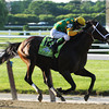 Palace Malice in the stretch at Belmont Stakes.<br /> Dave Harmon Photo