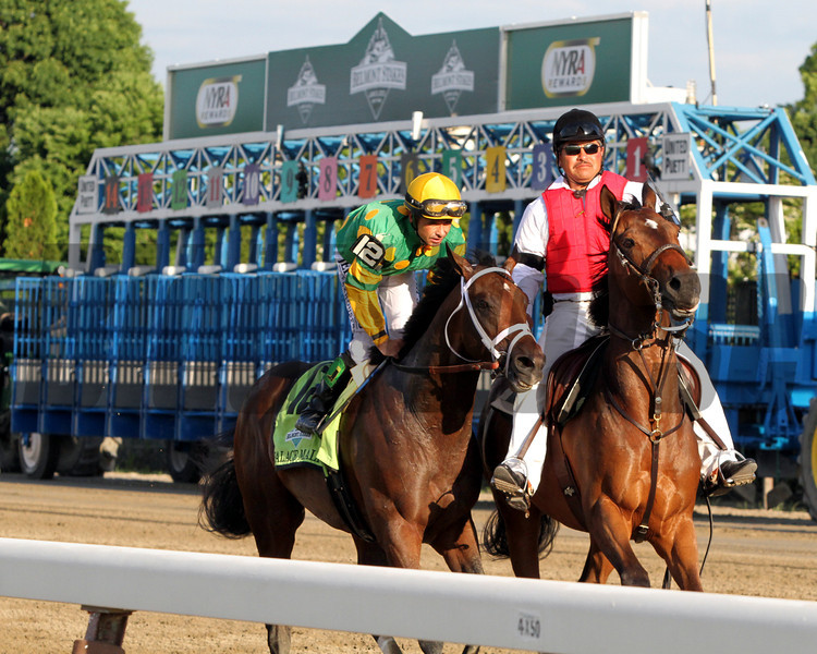 Palice Malice Belmont Stakes
