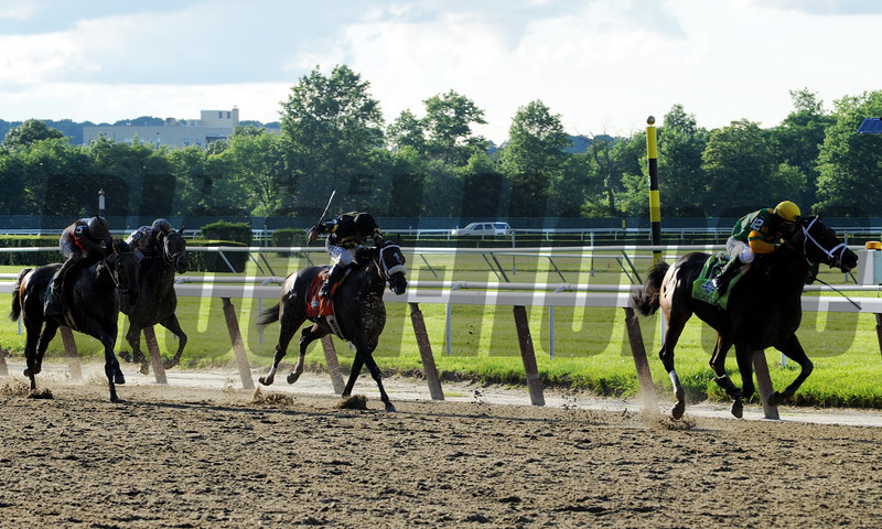 Palace Malice in the Belmont final stretch!                                    <br /> Skip Dickstein