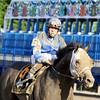 Incognito Belmont Stakes Irad Ortiz Jr.