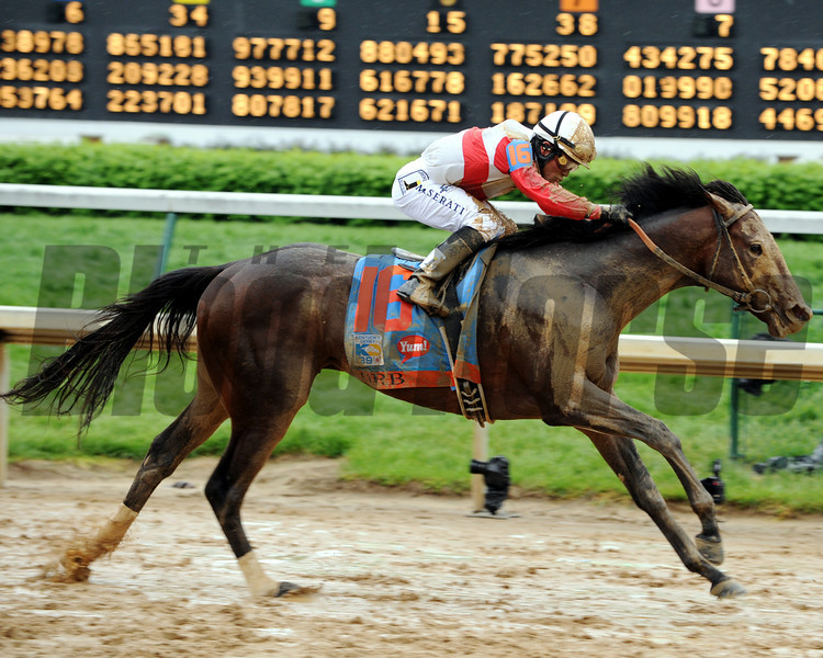 Orb wins the 2013 Kentucky Derby.<br /> Dave Harmon Photo