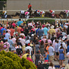 The infield crowd watches on as the field for the Besilu Stakes run down the backstrech.