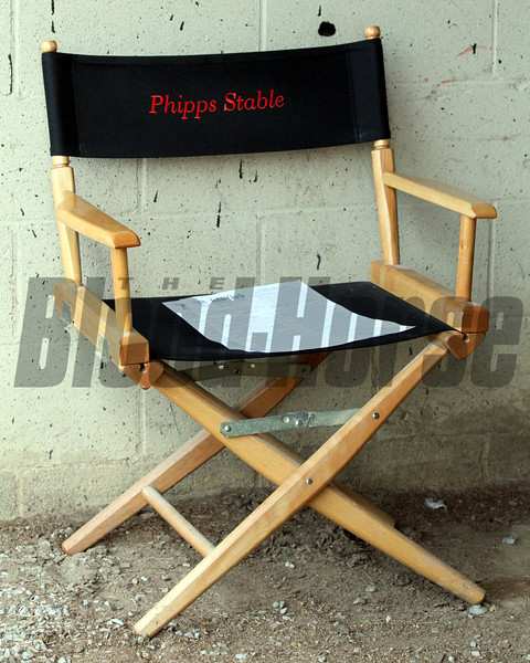 Phipps Stable Chair Kentucky Derby