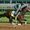 Overanalyze Kentucky Derby 2013<br /> Churchill Downs, Louisville KY, photo by Mathea Kelley, 2/5/13