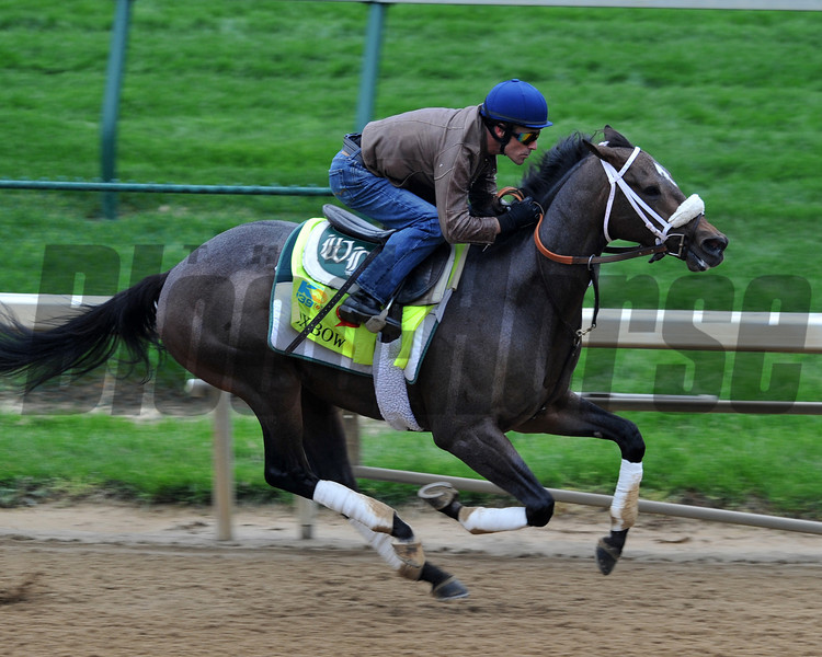 Oxbow, Kentucky Derby 2013<br /> Churchill Downs, Louisville KY, photo by Mathea Kelley, 4/29/13