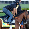Caption:  Goldencents on the track for the first time<br /> works and scenes at Churchill Downs near Louisville, Ky. on April 28, 2013, during Kentucky Derby and Kentucky Oaks week.<br /> 3Works4_28_13 image540<br /> Photo by Anne M. Eberhardt