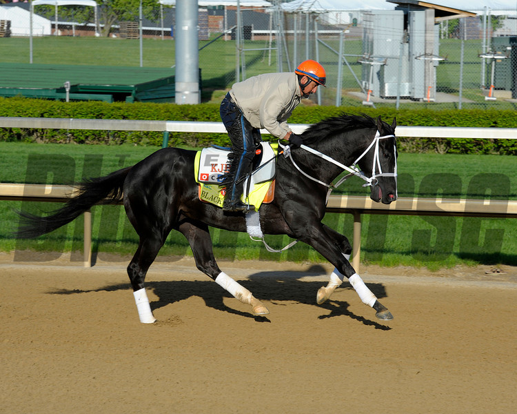 Caption: Black Onyx<br /> works and scenes at Churchill Downs near Louisville, Ky. on April 26, 2013, during Kentucky Derby and Kentucky Oaks week.<br /> 1Works4_26_13 image774<br /> Photo by Anne M. Eberhardt