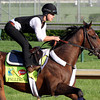 Falling Sky Kentucky Derby
