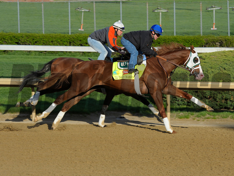 Caption: Will Take Charge working in company<br /> Morning scenes at Churchill Downs near Louisville, Ky., on April 21, 2013.<br /> 1Works4_21_13 image272<br /> Photo by Anne M. Eberhardt