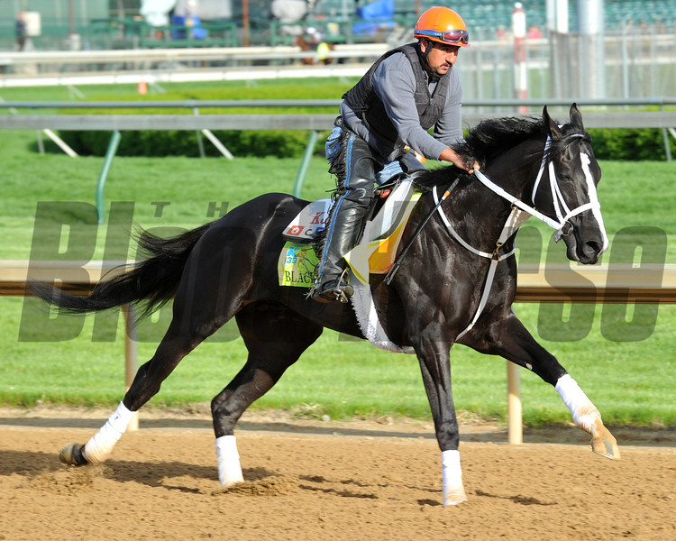 Black Onyx Kentucky Derby 2013 Churchill Downs, Louisville, KY photo by Mathea Kelley 5/2/13