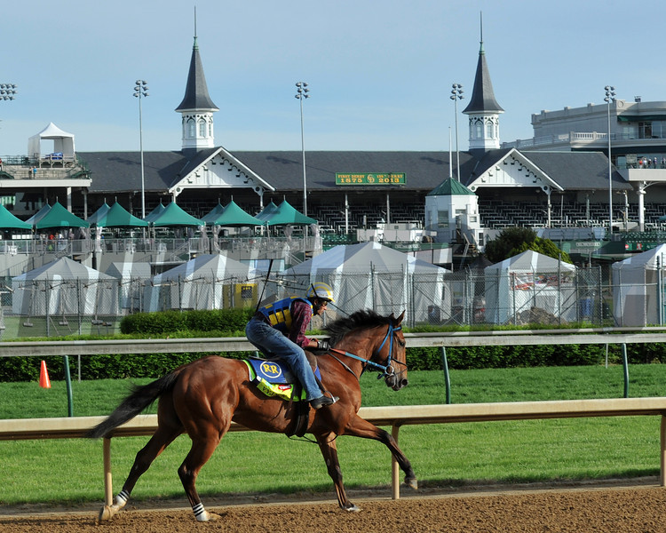 Vyjack, Kentucky Derby 2013<br /> Churchill Downs, Louisville KY, photo by Mathea Kelley, 5/2/13