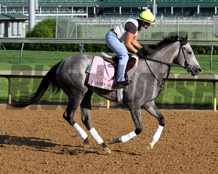 Flashy Gray Kentucky Oaks