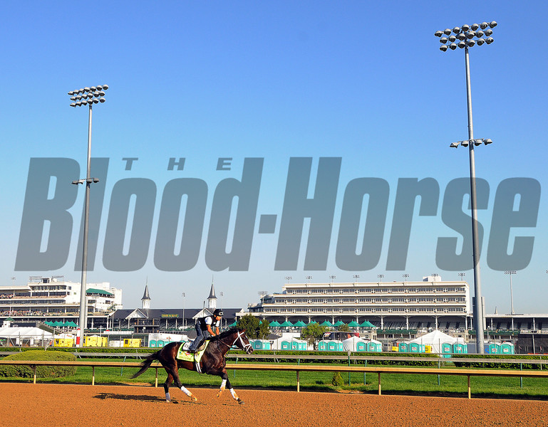 Wednesday morning at Churchill Downs...<br /> Oxbow<br /> © 2013 Rick Samuels/The Blood-Horse