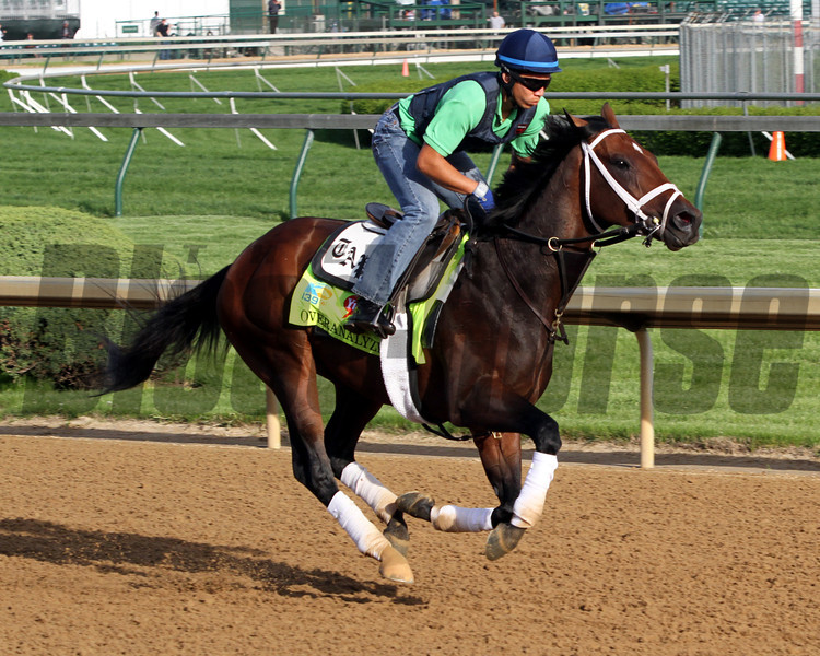 Overanalyze Kentucky Derby