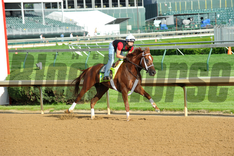 Golden Soul, Kentucky Derby 2013<br /> Churchill Downs, Louisville KY, photo by Mathea Kelley, 5/2/13