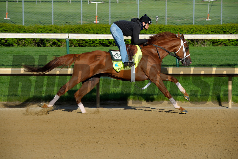 Caption: Golden Soul works<br /> works and scenes at Churchill Downs near Louisville, Ky. on April 26, 2013, during Kentucky Derby and Kentucky Oaks week.<br /> 1Works4_26_13 image926<br /> Photo by Anne M. Eberhardt