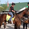 Orb Jen Patterson Kentucky Derby