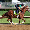 Will Take Charge Kentucky Derby