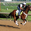 Java's War Kentucky Derby