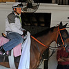 Caption:  Beholder in her shedrow<br /> works and scenes at Churchill Downs near Louisville, Ky. on May 1, 2013, during Kentucky Derby and Kentucky Oaks week.<br /> 2Works5_1_13 image798<br /> Photo by Anne M. Eberhardt