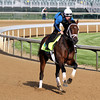 Palice Malice Kentucky Derby