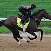 Orb, Kentucky Derby 2013<br /> Churchill Downs, Louisville KY, photo by Mathea Kelley, 4/29/13