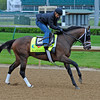 Caption: Palace Malice with Mike Smith<br /> works and scenes at Churchill Downs near Louisville, Ky. on April 27, 2013, during Kentucky Derby and Kentucky Oaks week.<br /> 1Works4_27_13 image203<br /> Photo by Anne M. Eberhardt