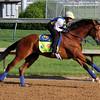 Vyjack Kentucky Derby Rudy Rodriguez