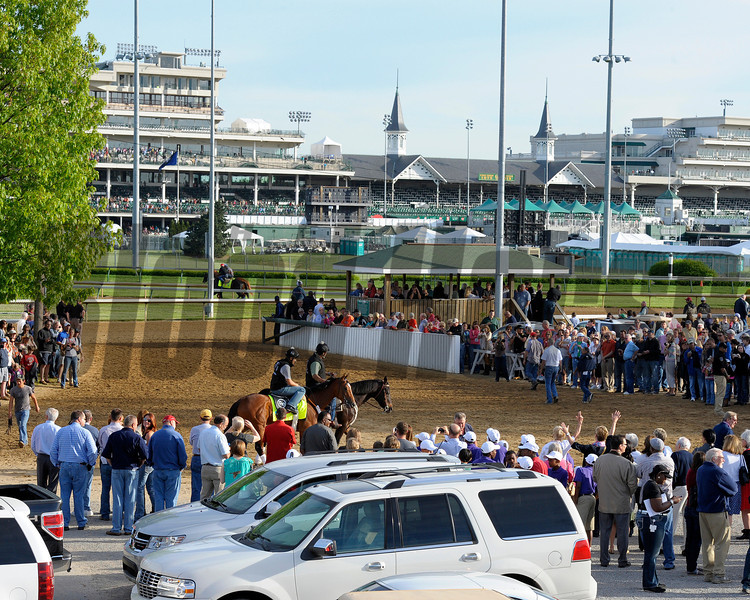 Caption:  Backstretch scene/Goldencents<br /> works and scenes at Churchill Downs near Louisville, Ky. on May 2, 2013, during Kentucky Derby and Kentucky Oaks week.<br /> 1Works5_2_13 image810<br /> Photo by Anne M. Eberhardt