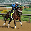 Palace Malice, Kentucky Derby 2013<br /> Churchill Downs, Louisville KY, photo by Mathea Kelley, 2/5/13